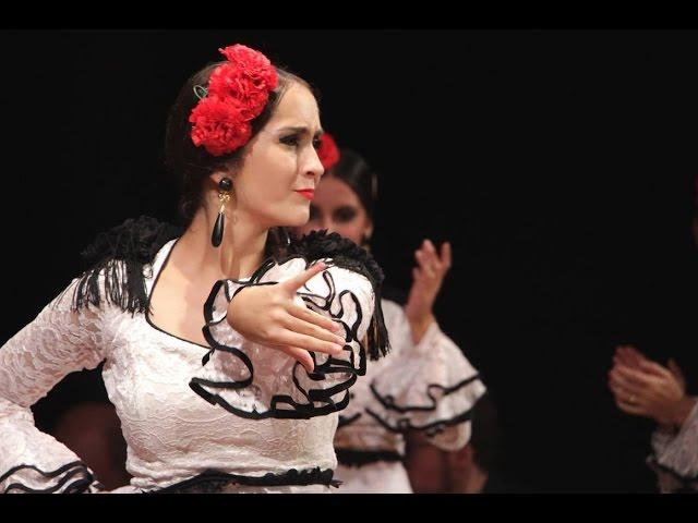 Danza flamenca en las XX Jornadas Culturales de Solera
