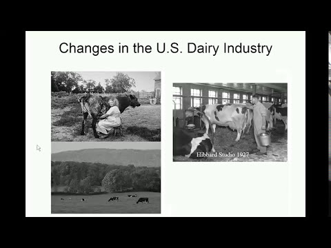 Overview of the Dairy Industry Webinar