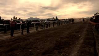250 meter horse race from my hometown San Felipe, Guanajuato. Enjoy!