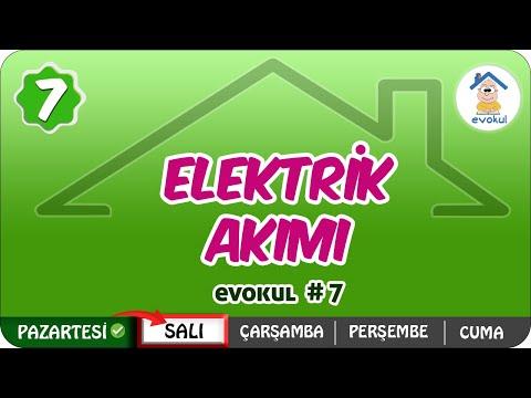 Elektrik Akımı | 7. Sınıf #uzaktaneğitim #evokul Kampı