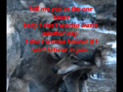 Hinder-I Don't wanna believe(Lyrics Video)