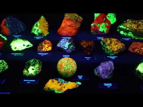 FLUORESCENT MINERALS DISPLAY - GLOW IN THE DARK ROCKS!