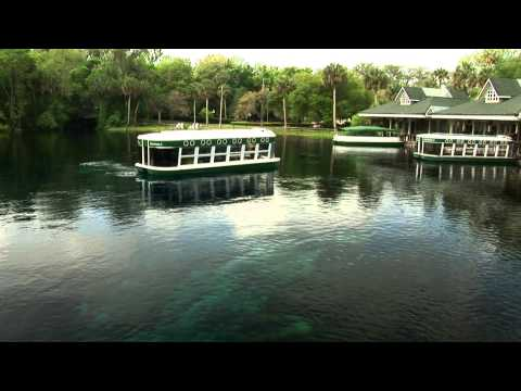 Florida Travel: Visit the Legendary Silver Springs