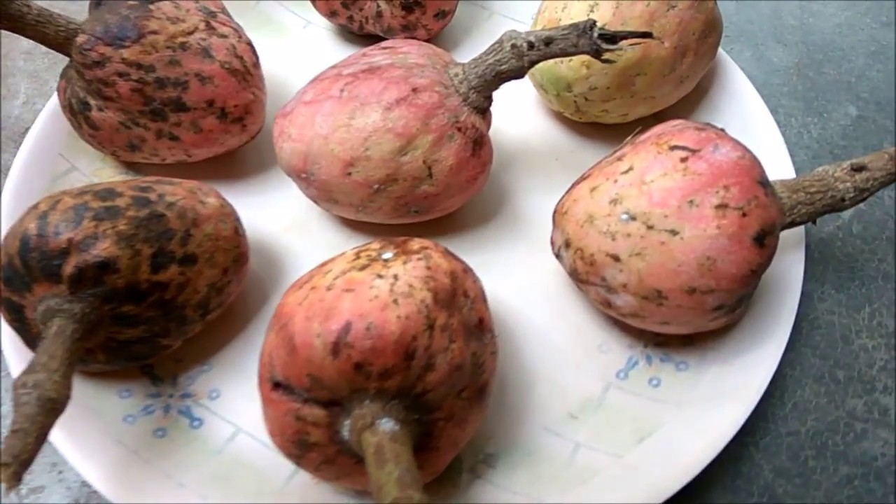 how to make custard apple