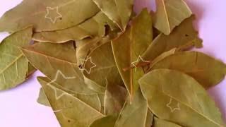 ЛАВРУШКА ПОЛЬЗА И ВРЕД | чем опасен лавровый лист, польза лаврового листа для лица