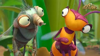 Insectibles | WILLOW ESCAPE | Cartoons For Kids