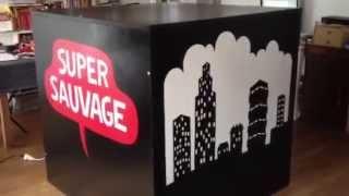 La cabane Super Sauvage