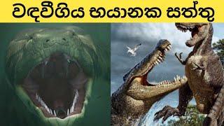 වඳවීමට ලක්වුන භයානක සත්තු... Scary extinct animals...