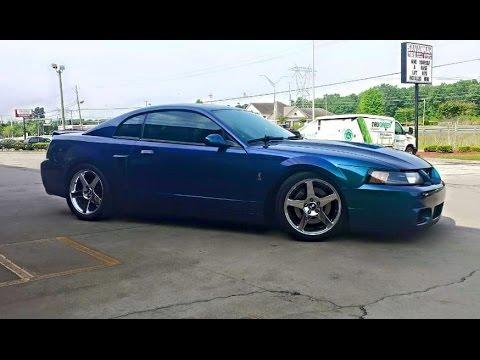 Terminator Mustang Vs