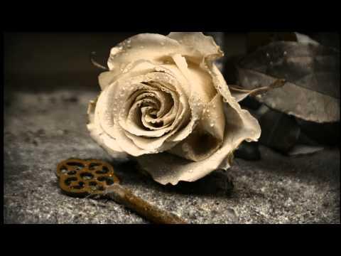 Evanescence - Anywhere (Cover A-capella)