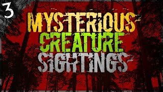 3 TERRIFYING and Mysterious Creature Sightings | Darkness Prevails