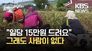 마늘 수확철 농촌 일손 부족…수확 곳곳 차질 / KBS…
