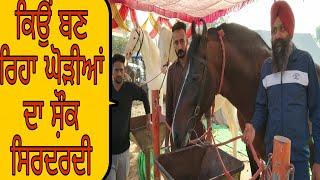 Stallion Gamma & Stallion Pawan in sri Muktsar sahib (Dr.Baljit singh virk)