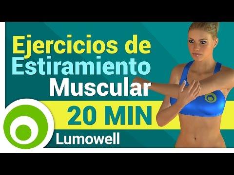 Ejercicios de estiramiento muscular para antes y después del ejercicio