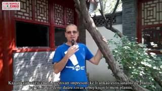 【Ĉinio en iliaj okuloj】La fama ĉina verkisto Lusin kaj Esperanto