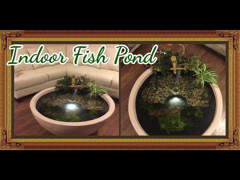 My Living Room Fish Pond!