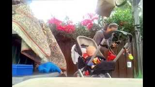 Как постричь ребенка машинкой (с куклой и собакой)