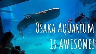 Osaka Aquarium is AMAZING!!!  beware of the sharks