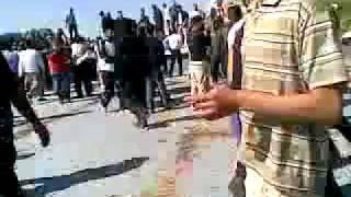 الجحش الذي قتل اثناء تحطيم تمثال حافظ الاسد هههههه