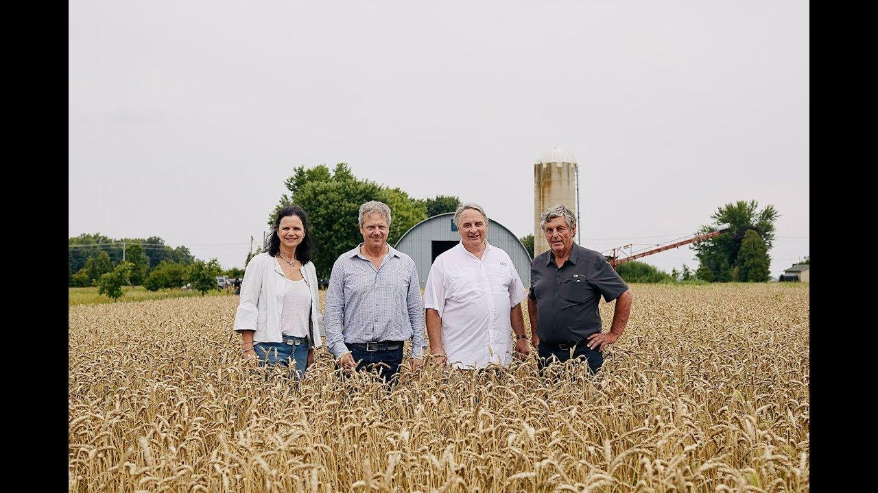 10 ans de culture de blé au Québec pour Première Moisson #1