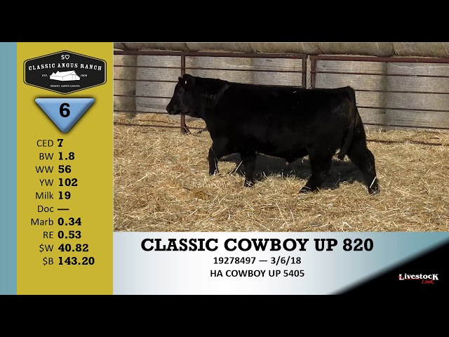 Classic Angus Ranch Lot 6