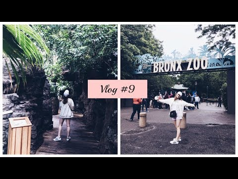 New York City Travel Vlog | Bronx Zoo| I rode a Camel! | Part 3| | Vlog 9|