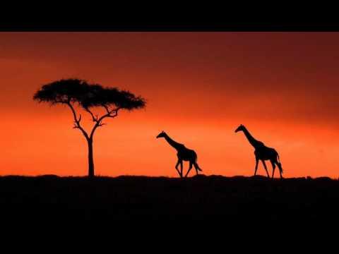 Linda - Language Of Love (Afrikan Roots Remix)