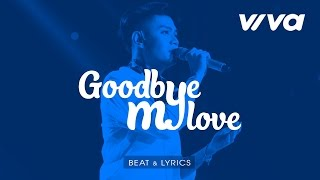 beat goodbye my love - dao ba loc  sing my song 2016