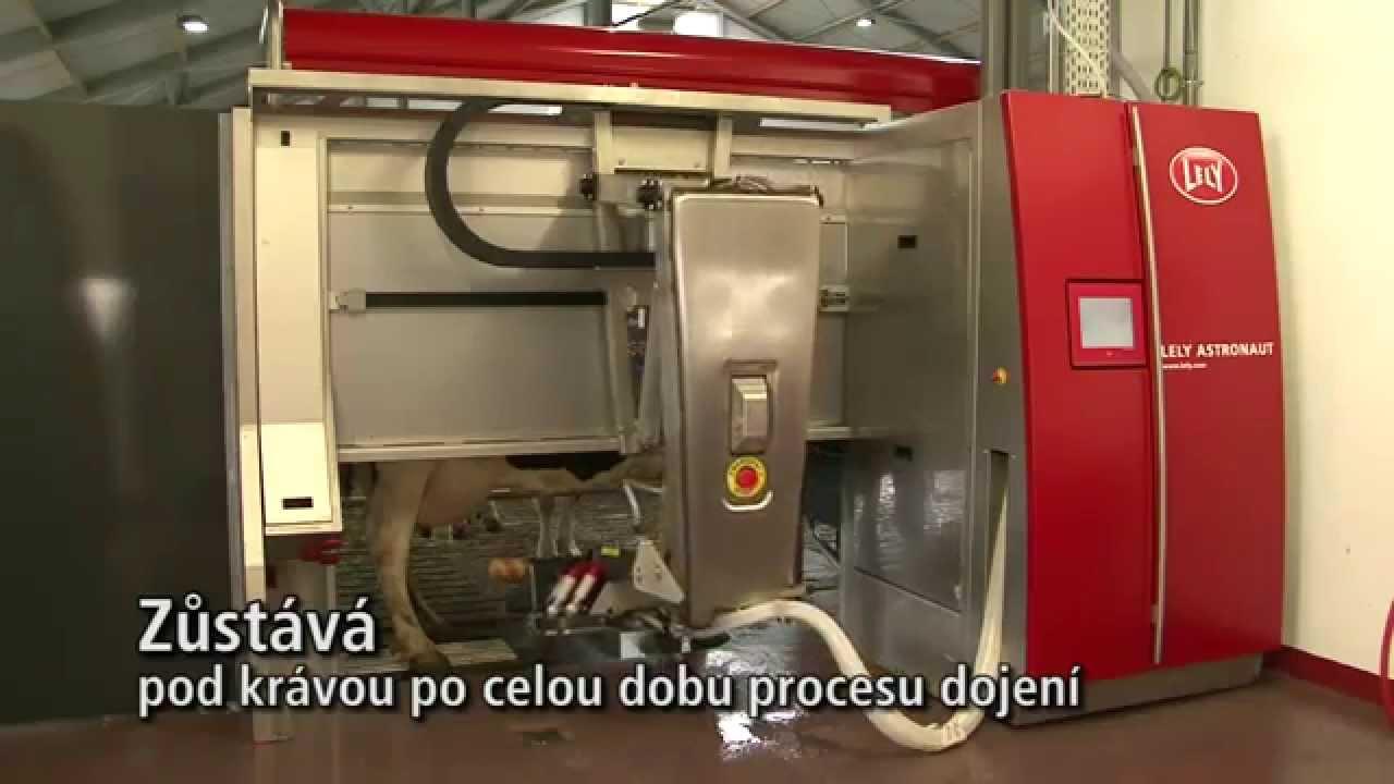 Lely Astronaut A4 - Milking robot arm (Czech)