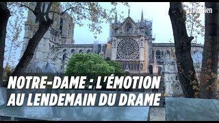 Notre Dame : l'émotion au lendemain du drame