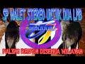 Sp Walet Stereo Untuk Dua Lmb Paling Respon  Mp3 - Mp4 Download