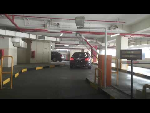 john-teng-is-shocked-at-how-expensive-cars-are-in-singapore!