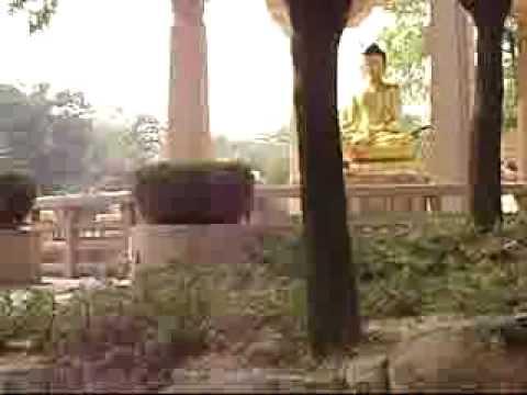 BUDDHA GARDEN 1