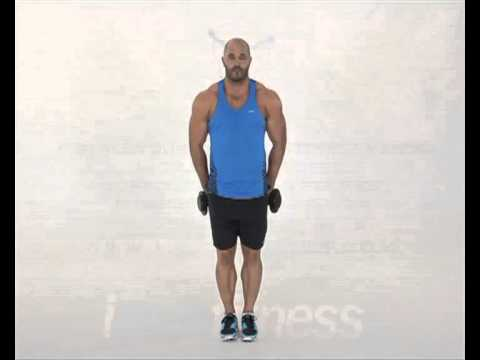 The Best Dumbbell Exercises and Workouts for Your Back