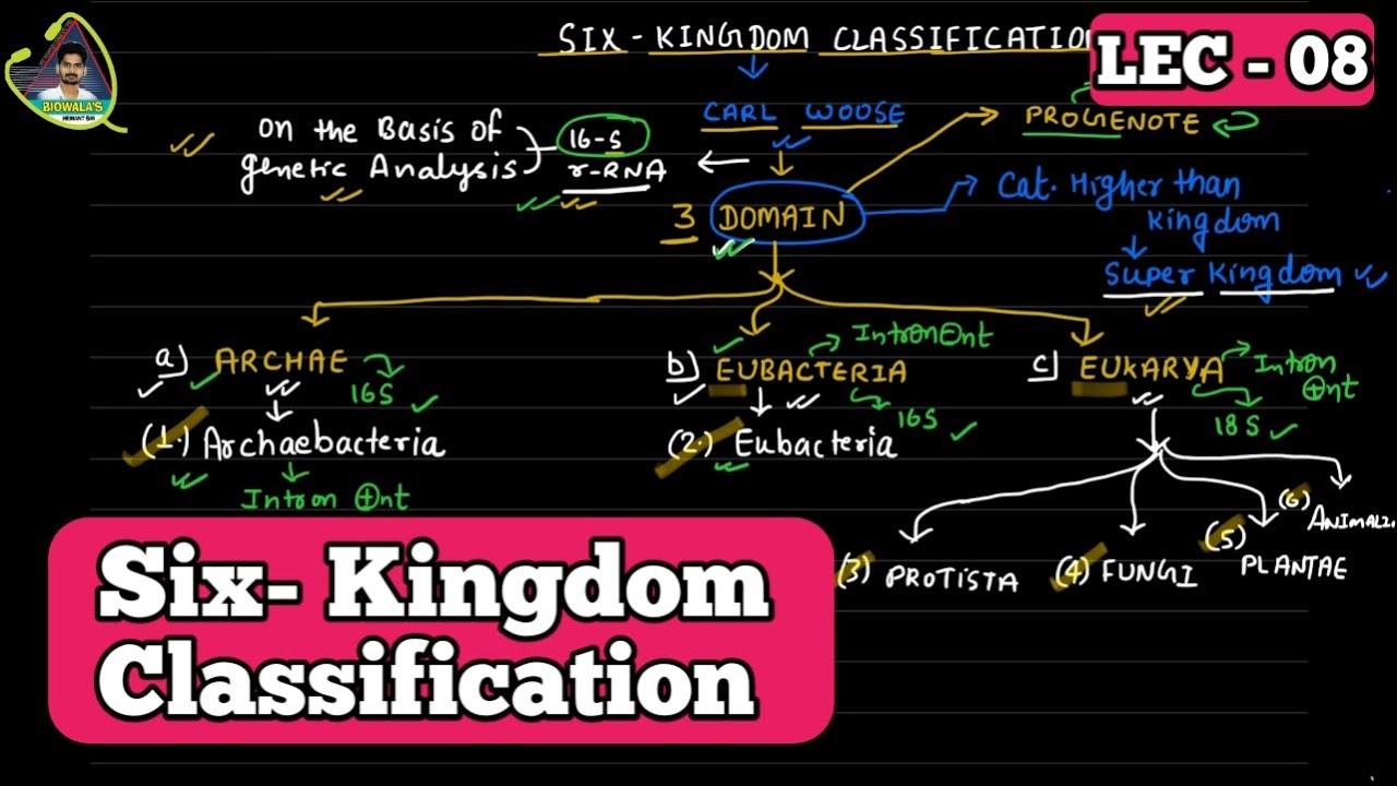 six kingdom classification system - 1280×720