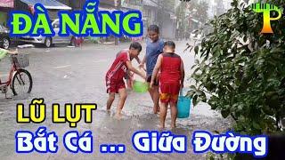 Đà Nẵng Ngập Lụt Lịch Sử - Giao thông tê liệt - Bắt Cá giữa đường