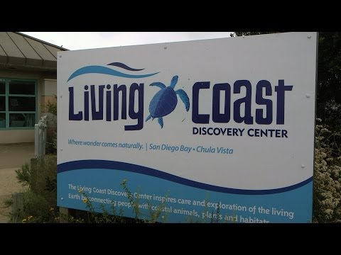 Salute to Education #16 Segment 3: Living Coast Discovery Center