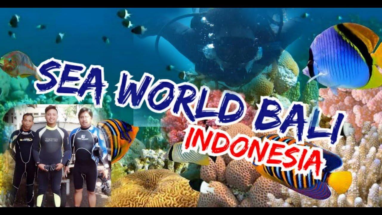 "SEA WORLD BALI INDONESIA"" YouTube"