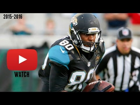 Julius Thomas Week 12 Highlights (116 Yards Recieving 1 TD)