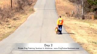 Private Dog Training In Arkansas - Dog Trainer