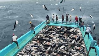 أكثر لحظات صيد الأسماك التي لا تنسى !!