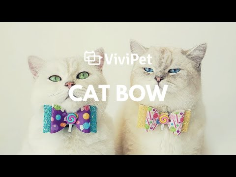 vivipet-|-hand-made-cat-bows