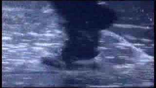 2007年10月6日公開「朧の森に棲む鬼」の予告です。 古田新太/阿部サダヲ...