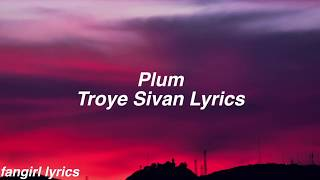 Plum || Troye Sivan Lyrics