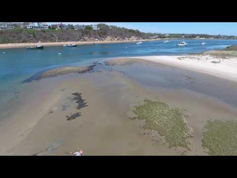 Cape Cod Clammer Attacks Drone