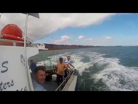 Fishing And Gulls In Exmouth Devon - With M&S Charters - BEST SEA FISHING