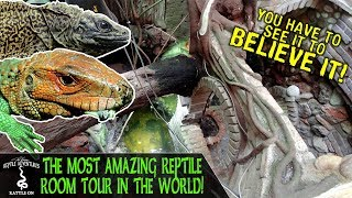 TOURING THE MOST AMAZING REPTILE ROOM IN THE WORLD!