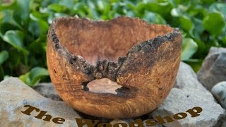 Maple Burl Bowl