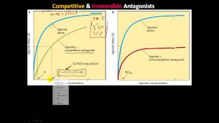 pharm4 - Receptor/Effector and Spare Receptors, Competitive, Irreversible, & chemical Antagonists
