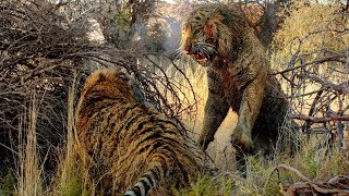 Самые жуткие схватки животных в диком мире!!!